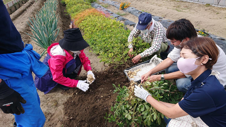 農作業をしている時は肩書も年齢も関係ない。